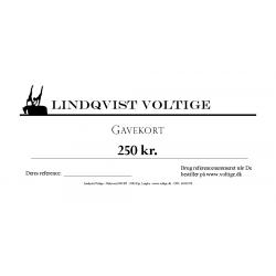 Gift Card - 250 DKK